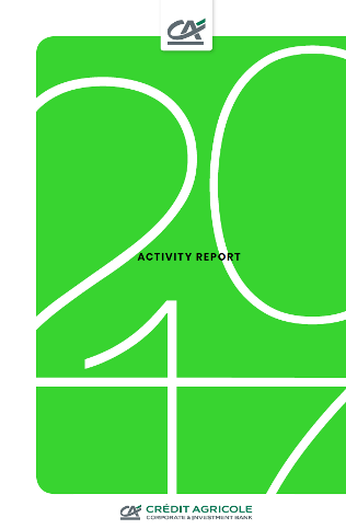 Cover of 2017 activity report