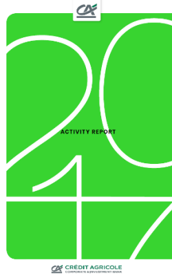 2017 Activity Report Cover